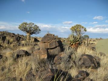 19 NAMIBIA 2008 Canon 008