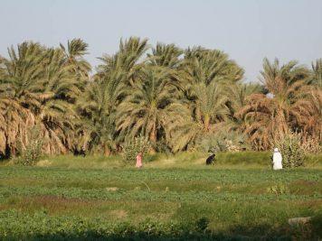 Am Nil, Sudan