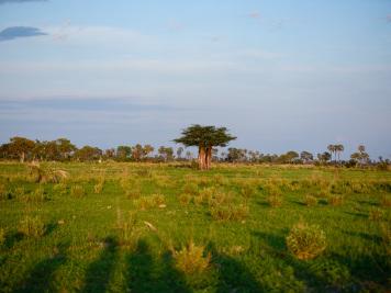 Reise 047-Quer durch Afrika - Marion und Daniel - Geschichten von unterwegs. Foto by Daniel Kempf-Seifried-106