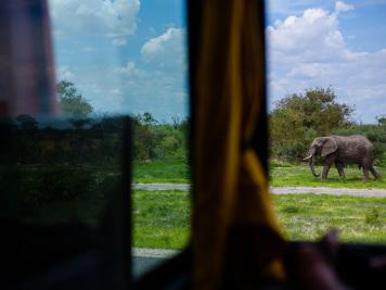 Reise 047-Quer durch Afrika - Marion und Daniel - Geschichten von unterwegs. Foto by Daniel Kempf-Seifried-124