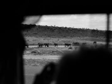 Reise 047-Quer durch Afrika - Marion und Daniel - Geschichten von unterwegs. Foto by Daniel Kempf-Seifried-125
