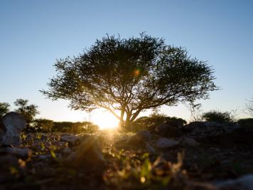Reise 047-Quer durch Afrika - Marion und Daniel - Geschichten von unterwegs. Foto by Daniel Kempf-Seifried-13