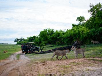 Reise 047-Quer durch Afrika - Marion und Daniel - Geschichten von unterwegs. Foto by Daniel Kempf-Seifried-147