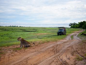 Reise 047-Quer durch Afrika - Marion und Daniel - Geschichten von unterwegs. Foto by Daniel Kempf-Seifried-148