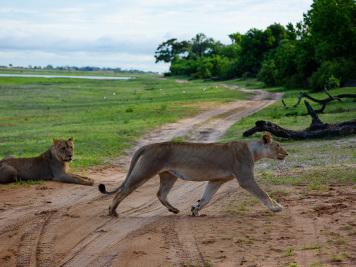 Reise 047-Quer durch Afrika - Marion und Daniel - Geschichten von unterwegs. Foto by Daniel Kempf-Seifried-151