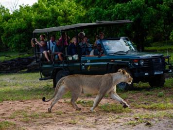 Reise 047-Quer durch Afrika - Marion und Daniel - Geschichten von unterwegs. Foto by Daniel Kempf-Seifried-152
