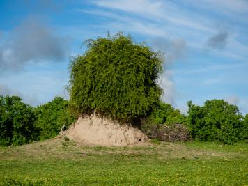 Reise 047-Quer durch Afrika - Marion und Daniel - Geschichten von unterwegs. Foto by Daniel Kempf-Seifried-160