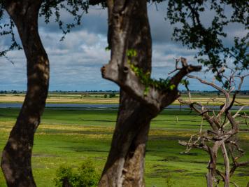 Reise 047-Quer durch Afrika - Marion und Daniel - Geschichten von unterwegs. Foto by Daniel Kempf-Seifried-171