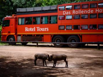 Reise 047-Quer durch Afrika - Marion und Daniel - Geschichten von unterwegs. Foto by Daniel Kempf-Seifried-191
