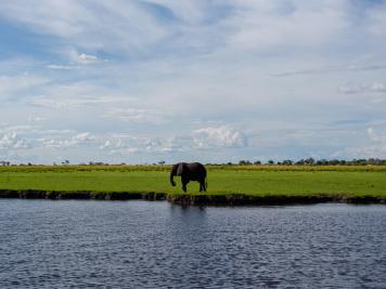 Reise 047-Quer durch Afrika - Marion und Daniel - Geschichten von unterwegs. Foto by Daniel Kempf-Seifried-195