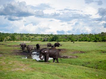 Reise 047-Quer durch Afrika - Marion und Daniel - Geschichten von unterwegs. Foto by Daniel Kempf-Seifried-197