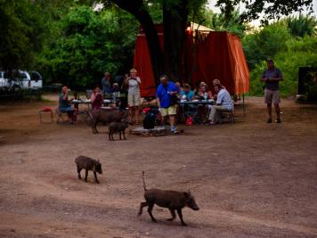Reise 047-Quer durch Afrika - Marion und Daniel - Geschichten von unterwegs. Foto by Daniel Kempf-Seifried-201