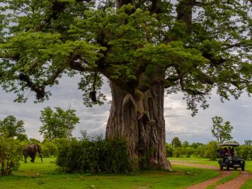 Reise 047-Quer durch Afrika - Marion und Daniel - Geschichten von unterwegs. Foto by Daniel Kempf-Seifried-299