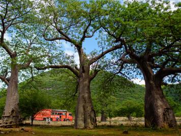 Reise 047-Quer durch Afrika - Marion und Daniel - Geschichten von unterwegs. Foto by Daniel Kempf-Seifried-480