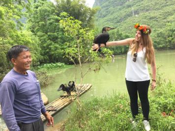 Zu Besuch bei den Kormoranfischern in Yangshuo. DieVögel sind abgerichtet um beim Fischfang zu helfen.